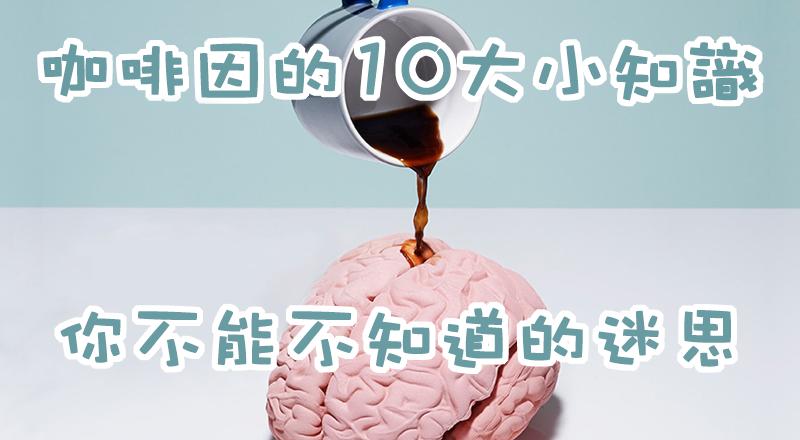 咖啡因的10大小知識